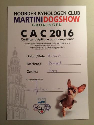 MartiniDogShow 2016